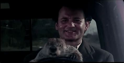 groundhog day how much time how bill murray actually spent in groundhog day