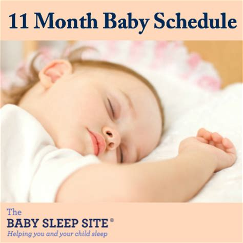 11 month old baby schedule | the baby sleep site baby