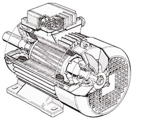 motore asincrono a gabbia di scoiattolo simulazione motore asincrono electroyou