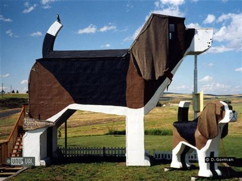 the dog house inn best hotel for dog owners 1 design per day