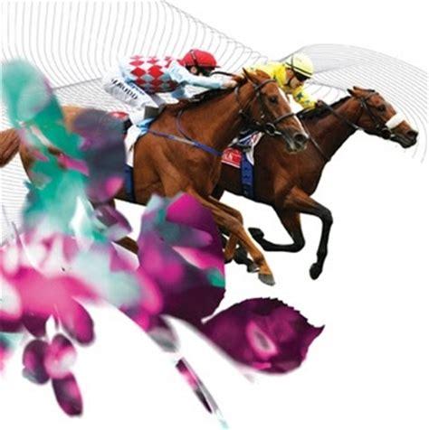 jarrah jungle melbourne cup spring racing