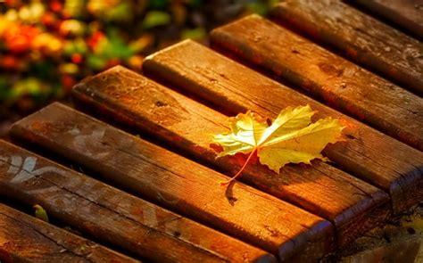 Schöne Bilder Zum Träumen by Bilder Vom Herbst Herbstbilder Kostenlos Fotos Herbst