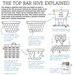 a top bar honeybee hive a k a the honey cow