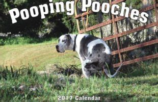 dogs pooping calendar 11 pieces of ludicrous and things
