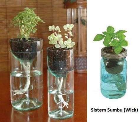 membuat hidroponik di rumah cara menanam hidroponik sederhana untuk pemula