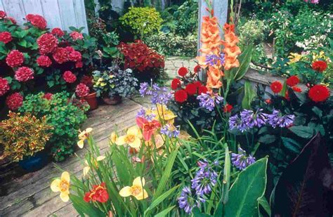 Potted Gardens Ideas Home Small Potted Gardens Ideas New Home Designs
