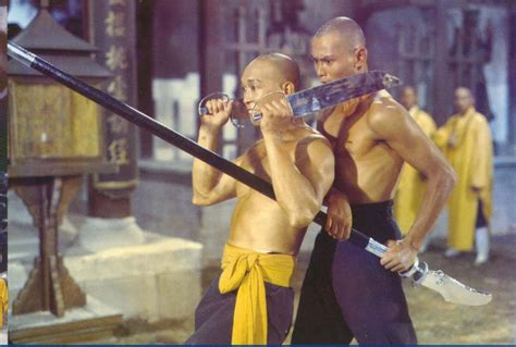 film boboho shaolin world wide martial arts top 20 martial arts films of all time