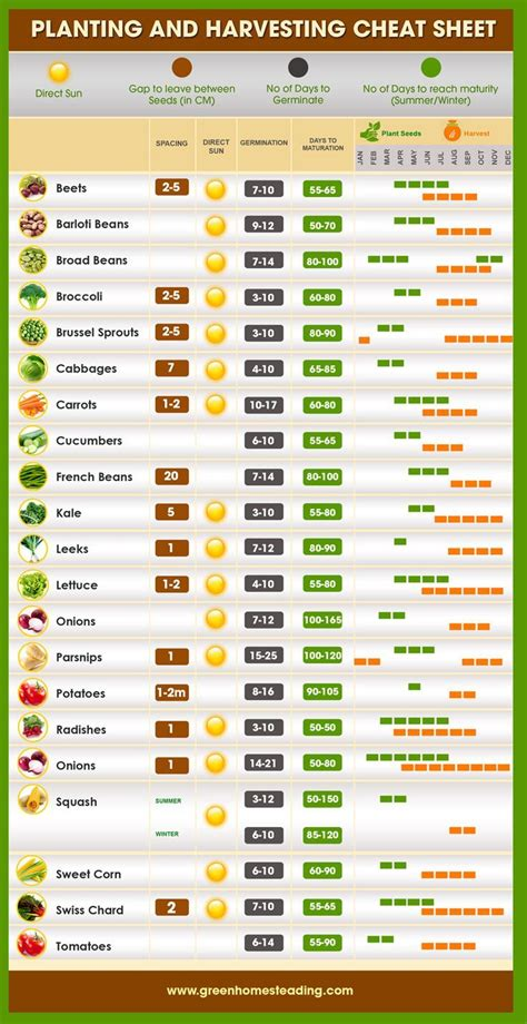 1000 Images About Gardening Infographics And Diagrams On Vegetable Garden Menu