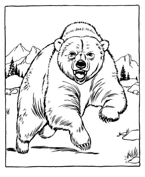 kodiak bear coloring page dibujos de osos 187 osopedia