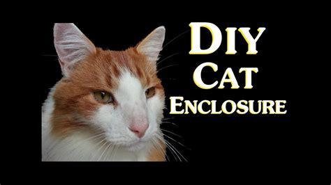 diy cat enclosure introduction  budget