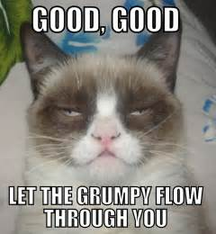Grumpy Cat Love Meme - grumpy cat and our funniest cat moments november 2013