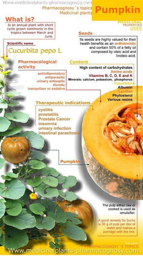 Pumpkin Seeds 500 Gr labu kuning kaya manfaat family nutrition
