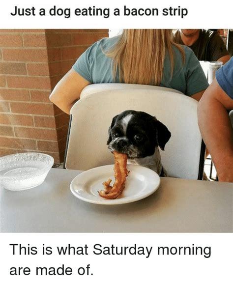 Meme Eating - top 29 eating meme life quotes humor