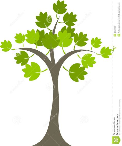 maple tree symbolism maple tree royalty free stock image image 31587836