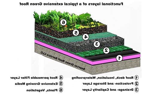 green roofs a useful solution to embellish our home and photos green roofs