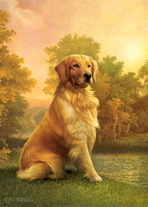 dean koontz golden retrievers 1000 images about dan craig on daniel craig artists and minnesota