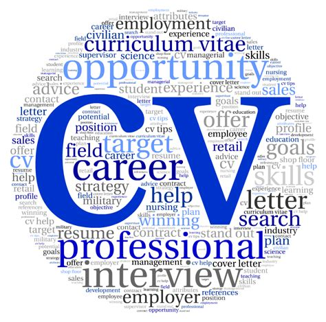Professional Cv Writing Service by Professional Cv Writing Service Improve My Cv