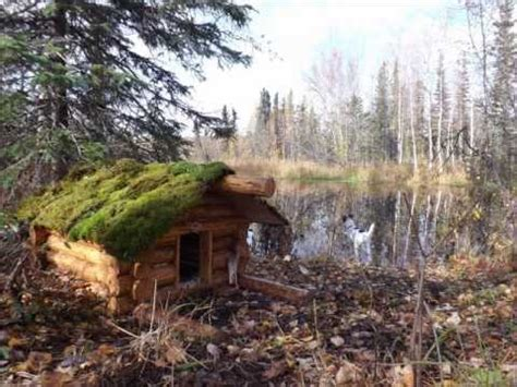 how to build a log cabin dog house casey s log cabin doghouse youtube
