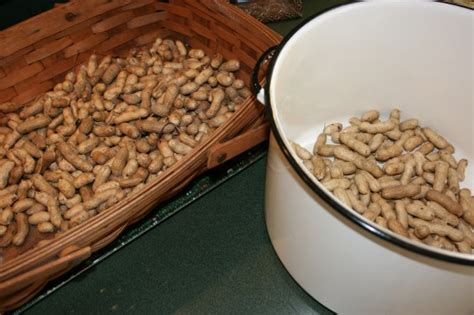 bettdecke 300x300 garden and gun boiled peanuts garden and gun boiled