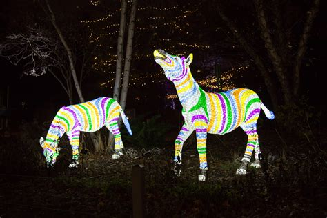 chicago lights 2017 chicago calendar of and winter events 2017