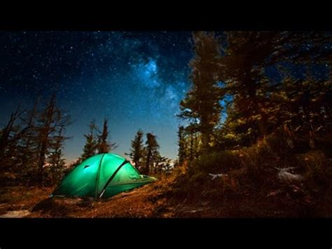 campfire sounds relaxing forest and nature soundscape