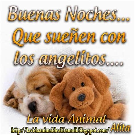 imagenes tiernas gratis de buenas noches bonitos perritos con frases de buenas noches en im 225 genes