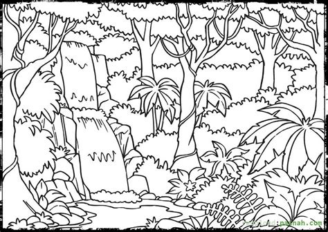 Rainforest Animals Coloring Pages by Rainforest Coloring Pages To And Print For Free