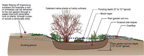 rain garden cross section be bay friendly chesapeake stormwater network