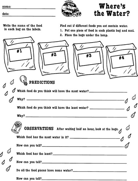the magic school worksheets where s the water a magic school printable scholastic