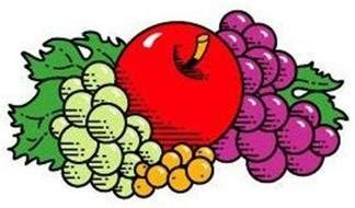 1 fruit of the loom drive fruit of the loom inc 1 fruit of the loom drive