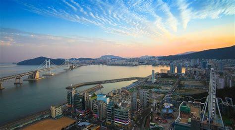 airbnb korea selatan 4 kota paling keren buat nikmatin bunga sakura di korea