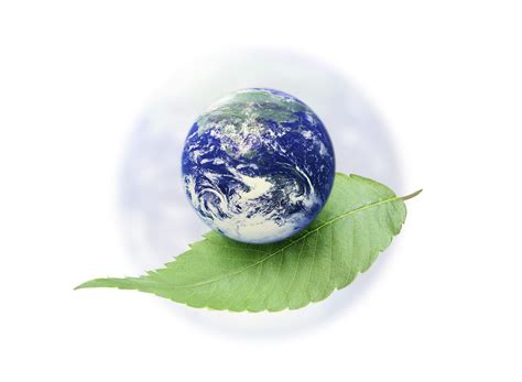 environment day picturespool world environmental day wallpapers quotes