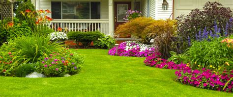 how to make my backyard beautiful 7 easy ideas to create a beautifully landscaped yard the