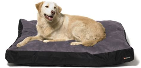 dog beds large large bed dogs sale canada buy dog beds online
