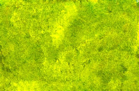 green paint green paint texture crowdbuild for