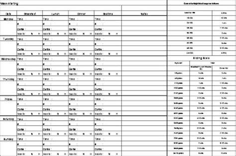 Diabetes Tracking Spreadsheet by Diabetes Log Sheet
