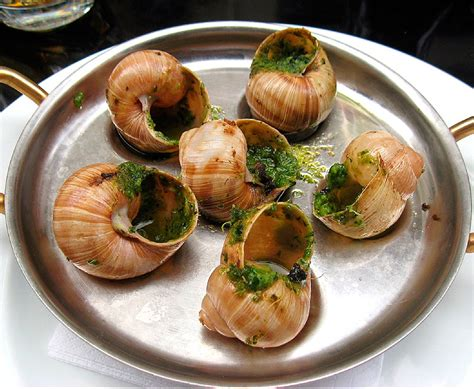cuisine escargots cuisine snails imgkid com the image kid has it