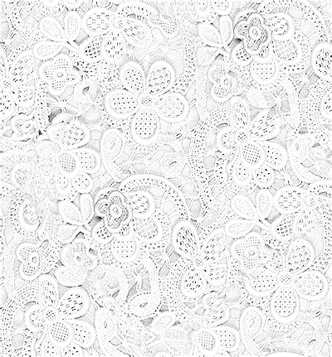 lace template pics photos lace pattern on white background picture