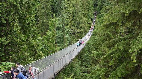 vancouver swinging bridge capilano suspension bridge wikipedia