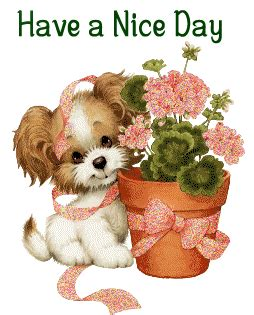 have a nice day – little dog with flowers | picdesi.com