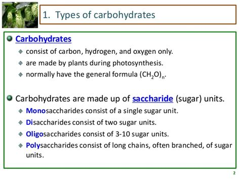 what are carbohydrates made of carbohydrates