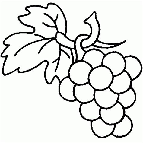 free coloring page of grapes free drawings of grape coloring pages