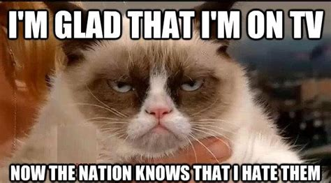 Best Of Grumpy Cat Meme - grumpy cat quotes funny collection world