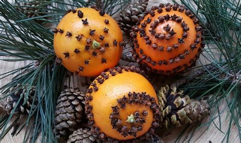 where to buy oranges with cloves for christmas decorations oranges and cloves www indiepedia org