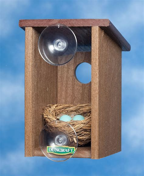 window bird houses duncraft com eco strong window view house