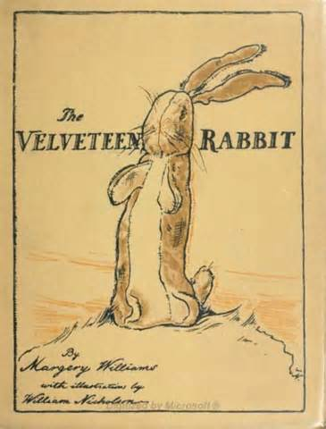the velveteen rabbit my little sunshine house