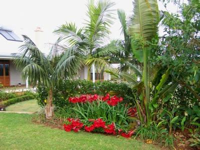 Sub Tropical Garden Designs Pdf Subtropical Garden Design Ideas