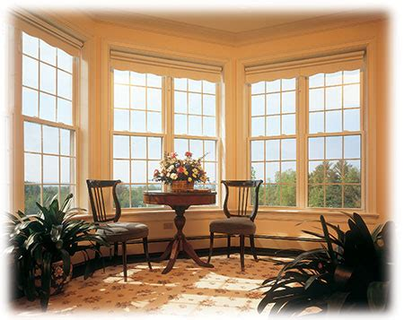 New Home Designs Latest Modern House Window Designs Ideas Windows Designs For Home