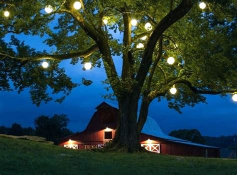 outdoor hanging lights for trees outdoor lantern lights for trees outdoor lighting ideas