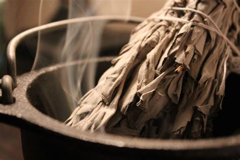 science  smudging  sage  cleans bacteria